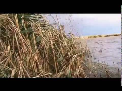 рыбалка в советском районе крыма