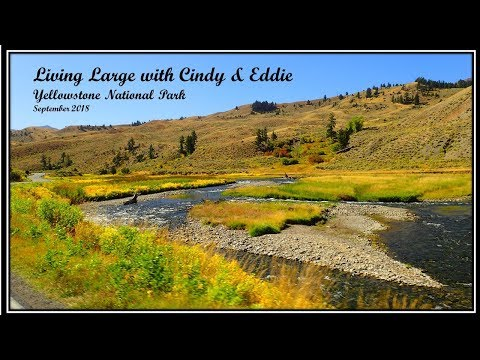 Living Large with Cindy & Eddie - Yellowstone National Park 2018