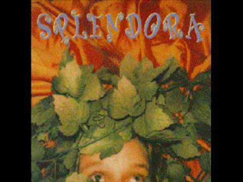 Splendora - Cover The River