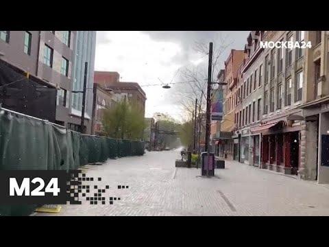 """""""Погода"""": в столице похолодает к концу недели - Москва 24"""