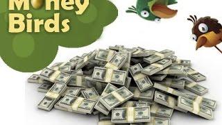 Money-birds. Как играть, чтобы зарабатывать больше!