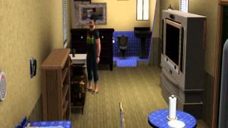 Тормоза и зависоны в Sims 3