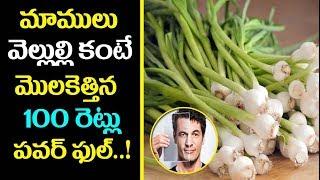 మాములు వెల్లుల్లి కంటే మొలకెత్తిన వెల్లుల్లి 100 రెట్లు పవర్ ఫుల్..! | Tips for Growing Great Garlic