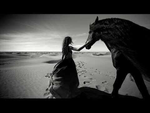 Evening Buffalo - Felix Snow  ( Video Edit )