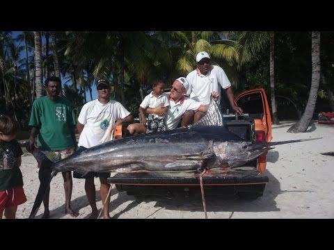 Big game fishing Mauritius video - 2015 Deep sea fishing trip in Mauritius