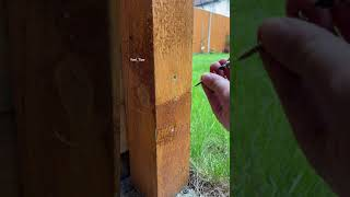 #shorts How to reṁove spinning screw