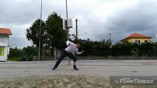 Flavio Moreira Martial Arts Training