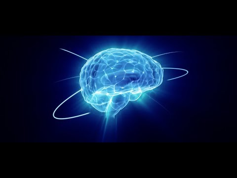 Brain About: Outstanding Facts and Curiosities about Human Brain
