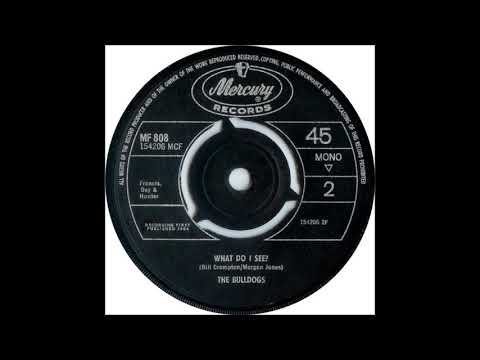 The Bulldogs - What Do I See? (1964)