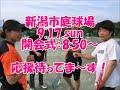 テニスサークル 学生 大会出場 新潟 医療系専門学校