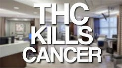"Exactly How Cannabis Kills Cancer Cells. EXACTLY How. (Not ""How THC Cures Cancer"")"