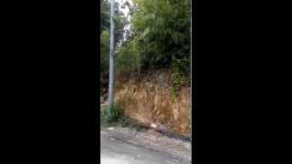 Gombak Malay Reserved Land for sale nearby UIAM - 3 acres