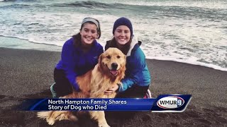 Family upset after dog dies at groomer's