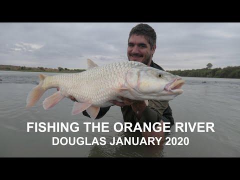 Fishing The Orange River - Douglas January 2020