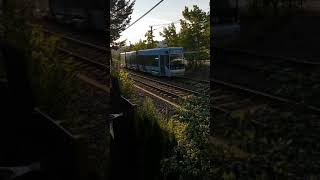 Gambar cover [Oslo] Ruter SL95 passing by our AirBnB!