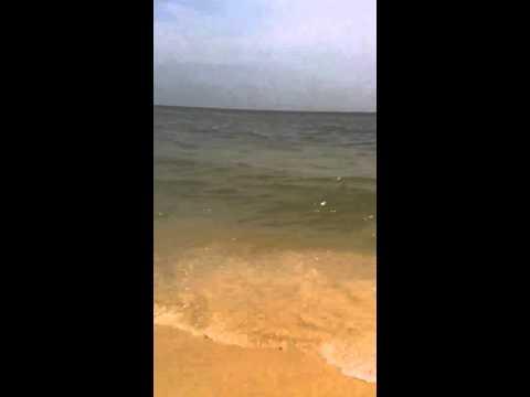 Throwing phone in ocean