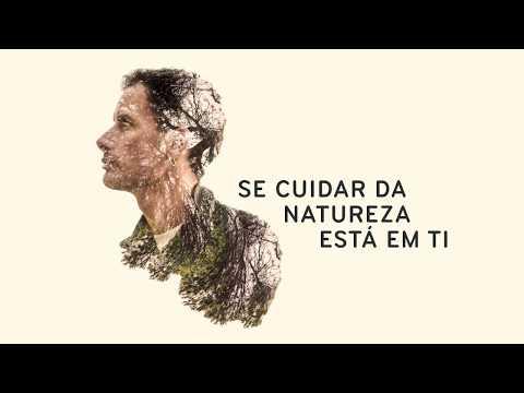 VOLUNTARIADO JOVEM PARA A NATUREZA E FLORESTAS | INFOGRAFIA