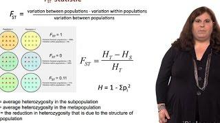 Measuring Genetic Variation (FST Statistic) - Sarah Tishkoff (U. Pennsylvania)