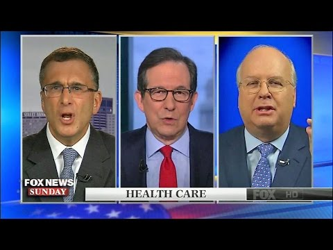 Karl Rove vs. Jonathan Gruber in Heated Debate over Obamacare Repeal