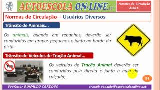 21 NORMAS DE CIRCULAÇÃO - Luzes e Buzina, Pedestres, Animais e Outros...