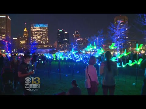 Light City Festival Coming To Electrifying End