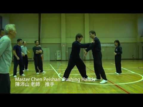 Master Chen Peishan Pushing Hands Vol 1