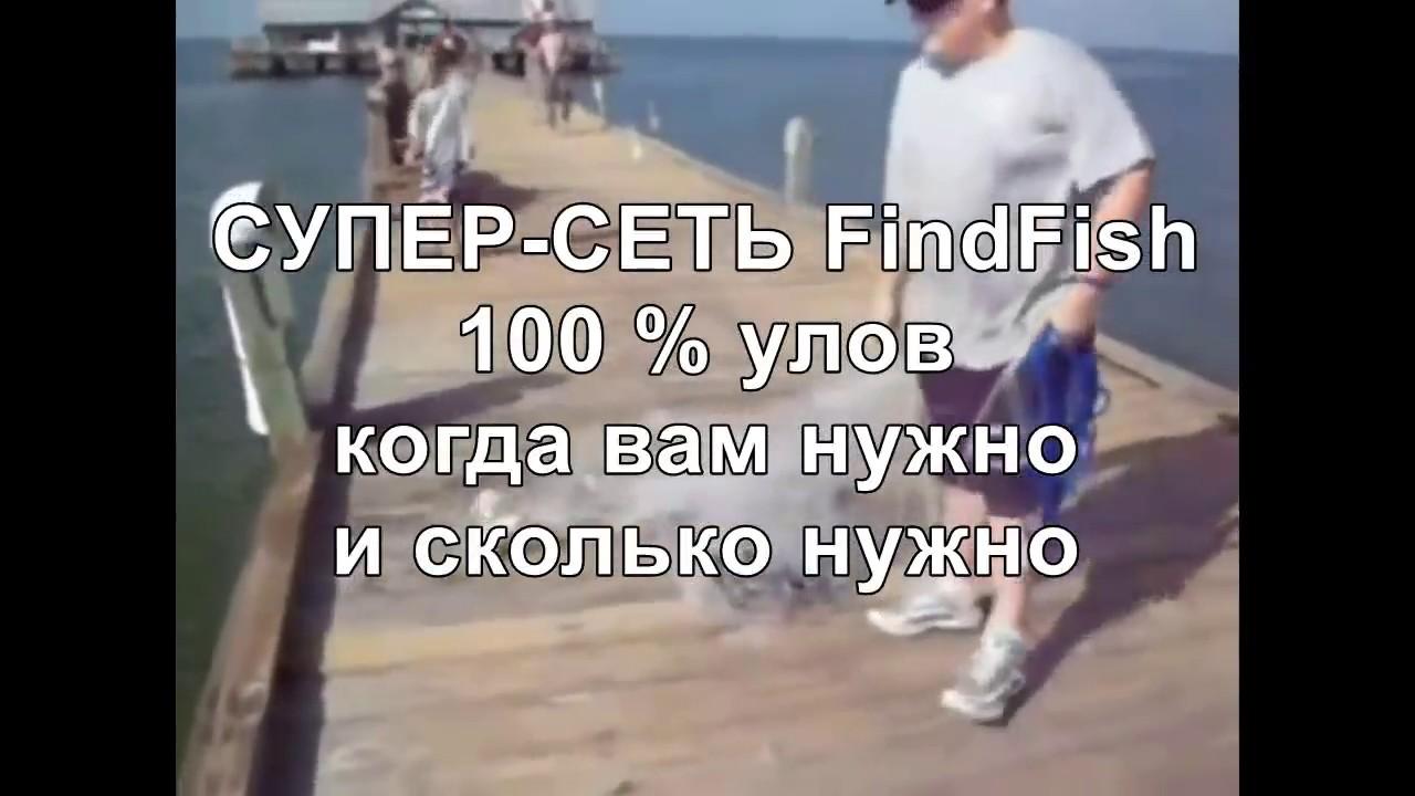 Суперсеть findfish своими руками