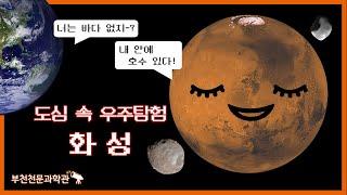 (자막)오늘은 화성이 가장 밝게 보이는 날!! | 도심…