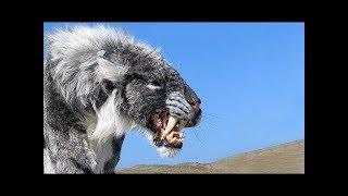 絶滅してよかったと思う、怖い動物18選