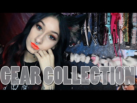 PETPLAY GEAR COLLECTION (Kitten, Wolf & Bunny) | 2017