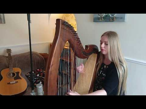 Heaven - Bryan Adams (Harp Cover)