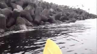連休釣りの2回戦、わしの釣り道楽は「釣れなくてもよし、釣れると魚を...
