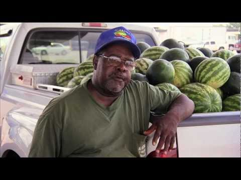 Watermelon Farmers - America's Heartland