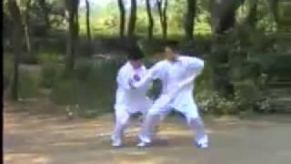 长春八极拳 何松吉 Zhangchun Ba Ji Quan He Songji