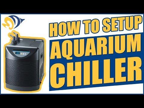 hook up aquarium chiller