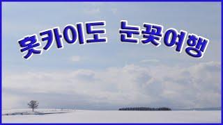 일본여행 홋카이도 삿보르 눈축제 북해도 겨울여행 비에이…