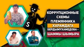 Туркменистан: Коррупционные Cхемы Племянника Харамдага Бердымухамедова - Шаммы Шымыра