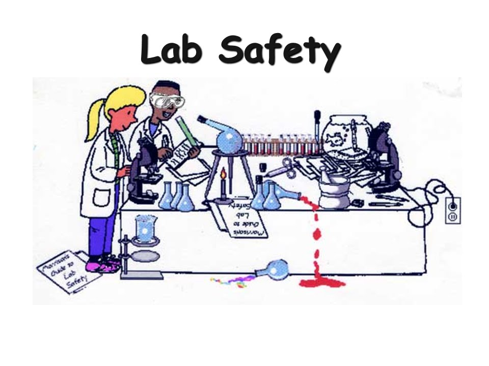 lab report theory A quick guide to writing a psychology lab-report abstract - introduction - method - results - discussion.