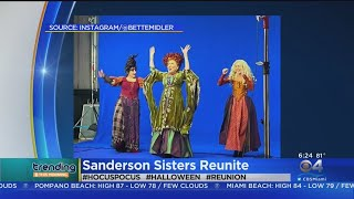 The Sanderson Sisters Reunite For 'Hocus Pocus' Virtual Event