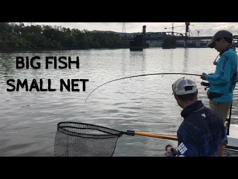 WE NEEDED A BIGGER NET TO CATCH THIS FISH!!!