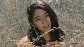 Горькая ягода | Аччик данак (узбекфильм на русском языке) 1975