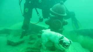 Underwater dog statue (and hydrant) at White Star Quarry