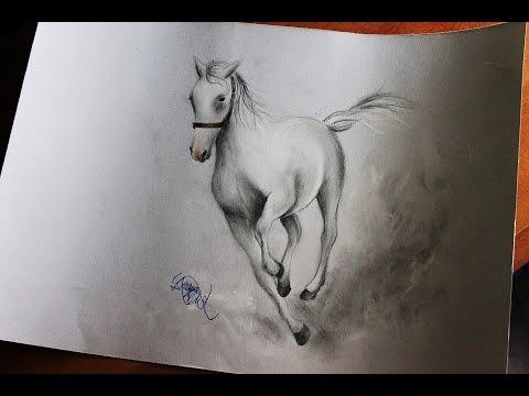 How To Draw A Horse Come Disegnare Un Cavallo Youtube