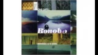 Bonobo - The Plug (Quantic Mix) Video