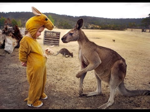 Discover Australia - The Country Of Kangaroos HD