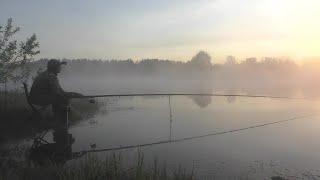 Рыбалка на озере с утра Ловля белой мирной рыбы на поплавок