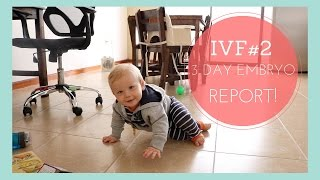 IVF#2: Day 3 Embryo Update!!!