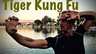 REAL Tiger Kung Fu Kata - YouTube CHALLENGE