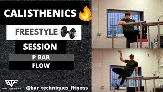 Calisthenics Freestyle Tricks Session - P Bar/ Dip Bar Flow