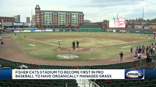 Fisher Cats' stadium to become first in pro baseball to have organically managed grass